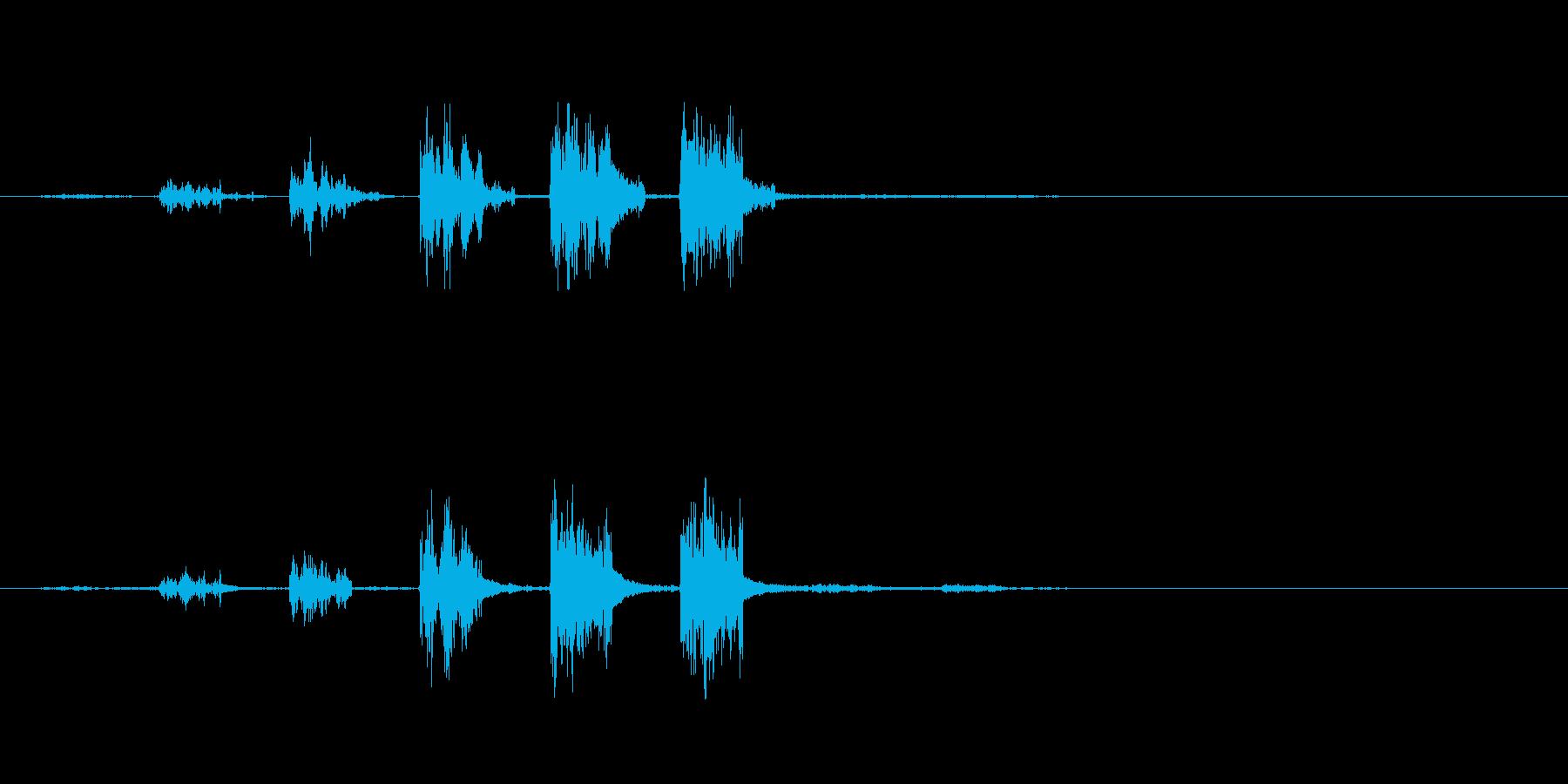 ピッの連音の再生済みの波形