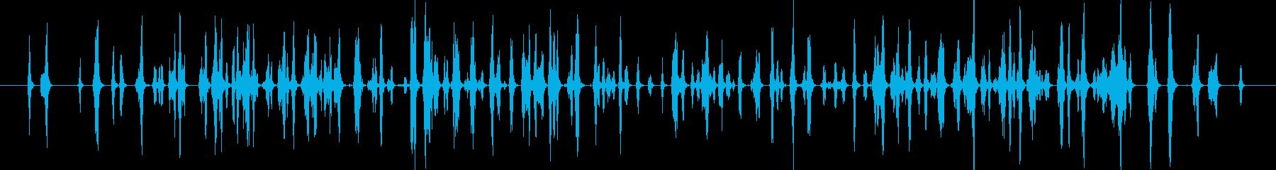 ピピッピピピッ..。小鳥の鳴き声(複数)の再生済みの波形