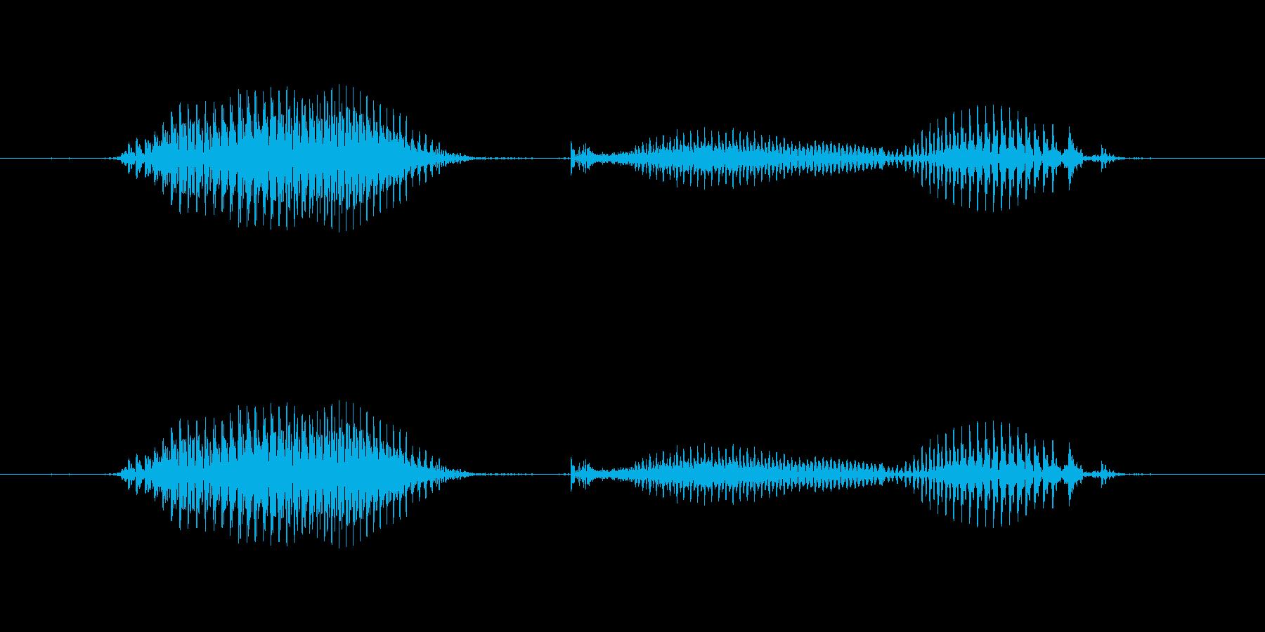 【日数・後】8日後の再生済みの波形
