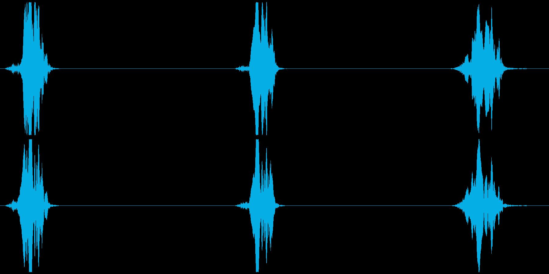 鳥の鳴き声 架空/想像 ヒヨッ×3の再生済みの波形