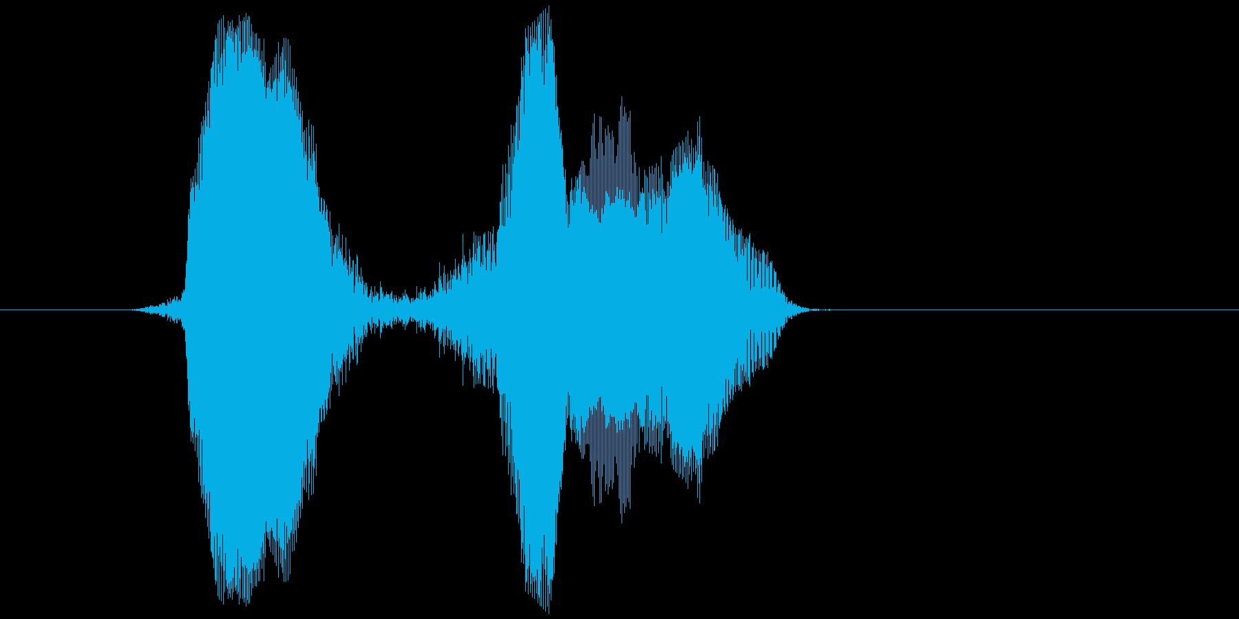 「ヒュー・ヒュー!」の再生済みの波形