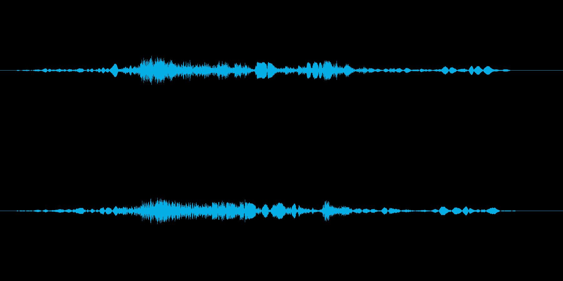 ガラス付引き戸を閉める音の再生済みの波形