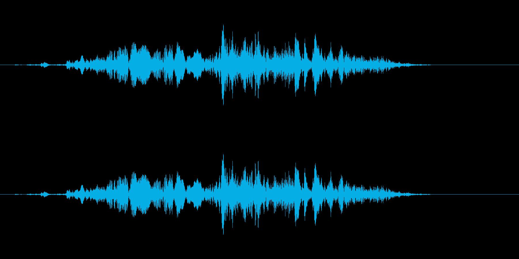 SF系ワンショット(キュキュキュイ)の再生済みの波形