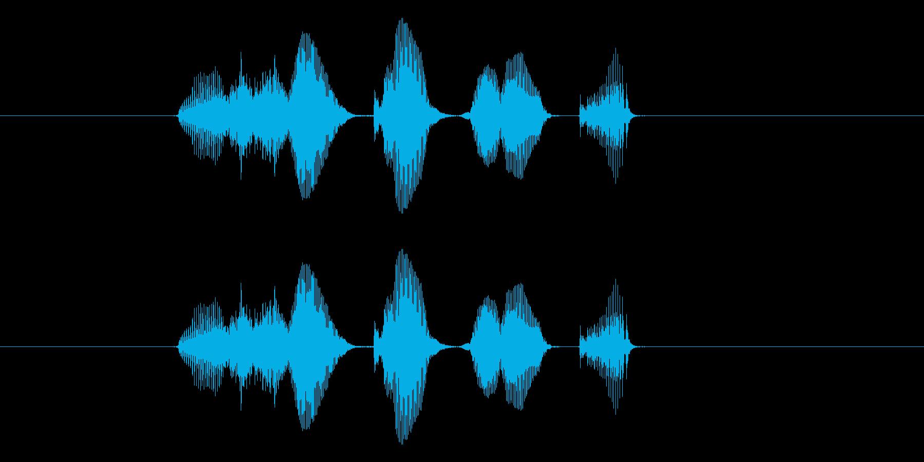 【システム】ミッションコンプリートの再生済みの波形