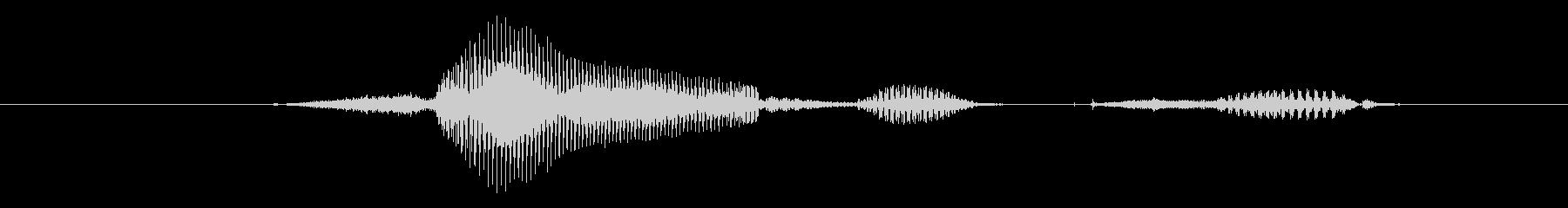 生物の未再生の波形