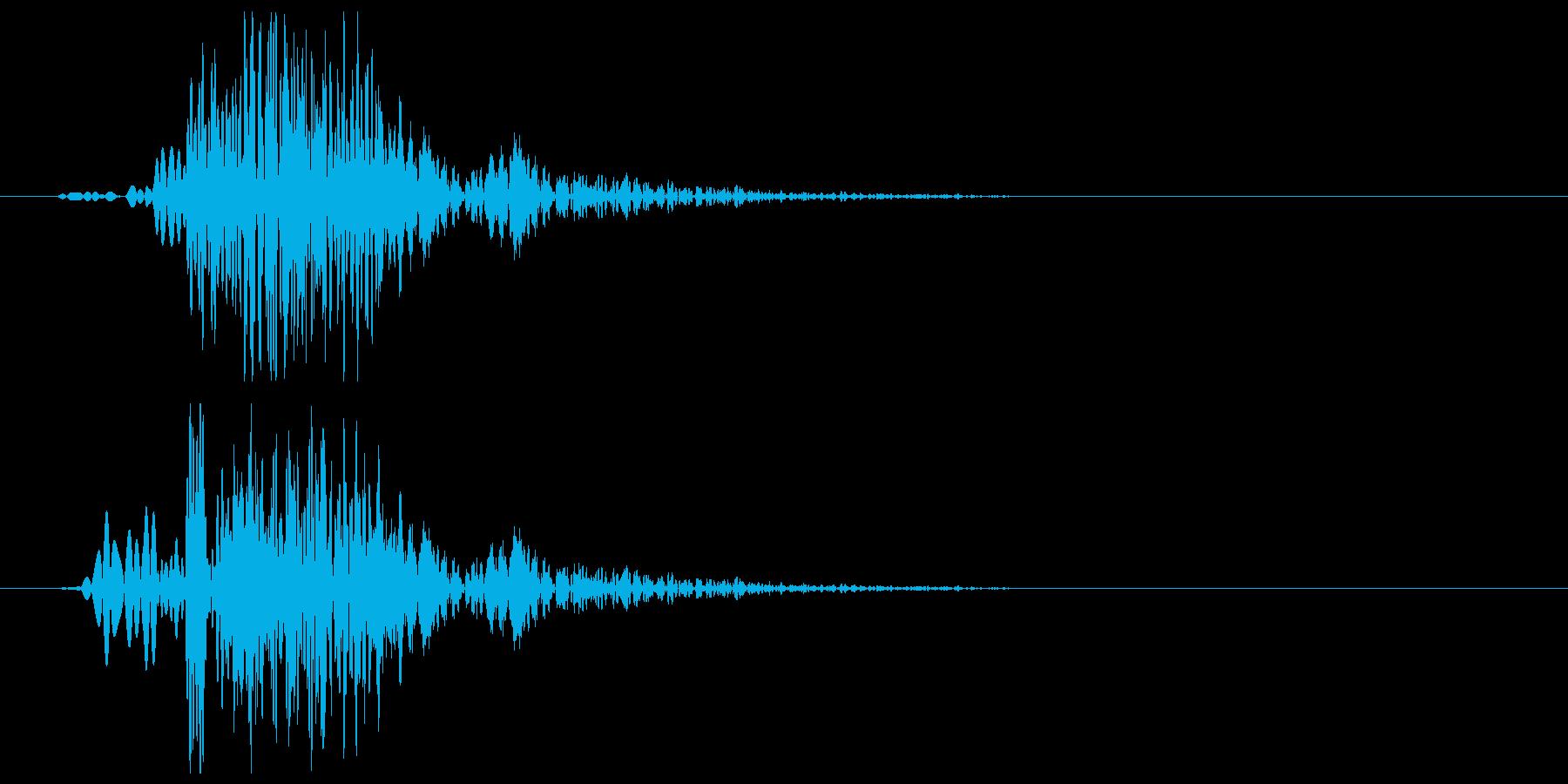 犬が小さく吠える効果音の再生済みの波形