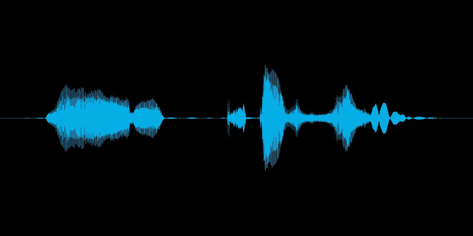 メール着信音 女性の再生済みの波形
