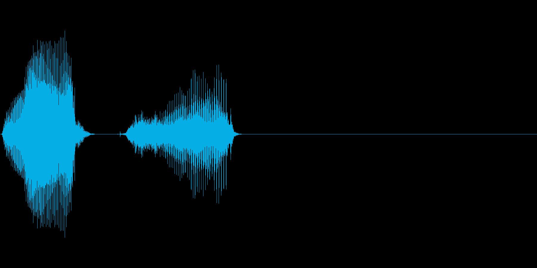 日(にち)の再生済みの波形