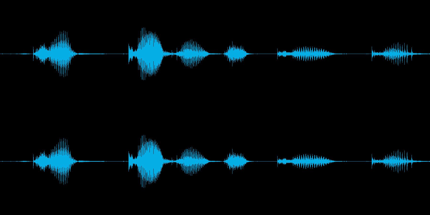 【日数・経過】10ヶ月経過の再生済みの波形