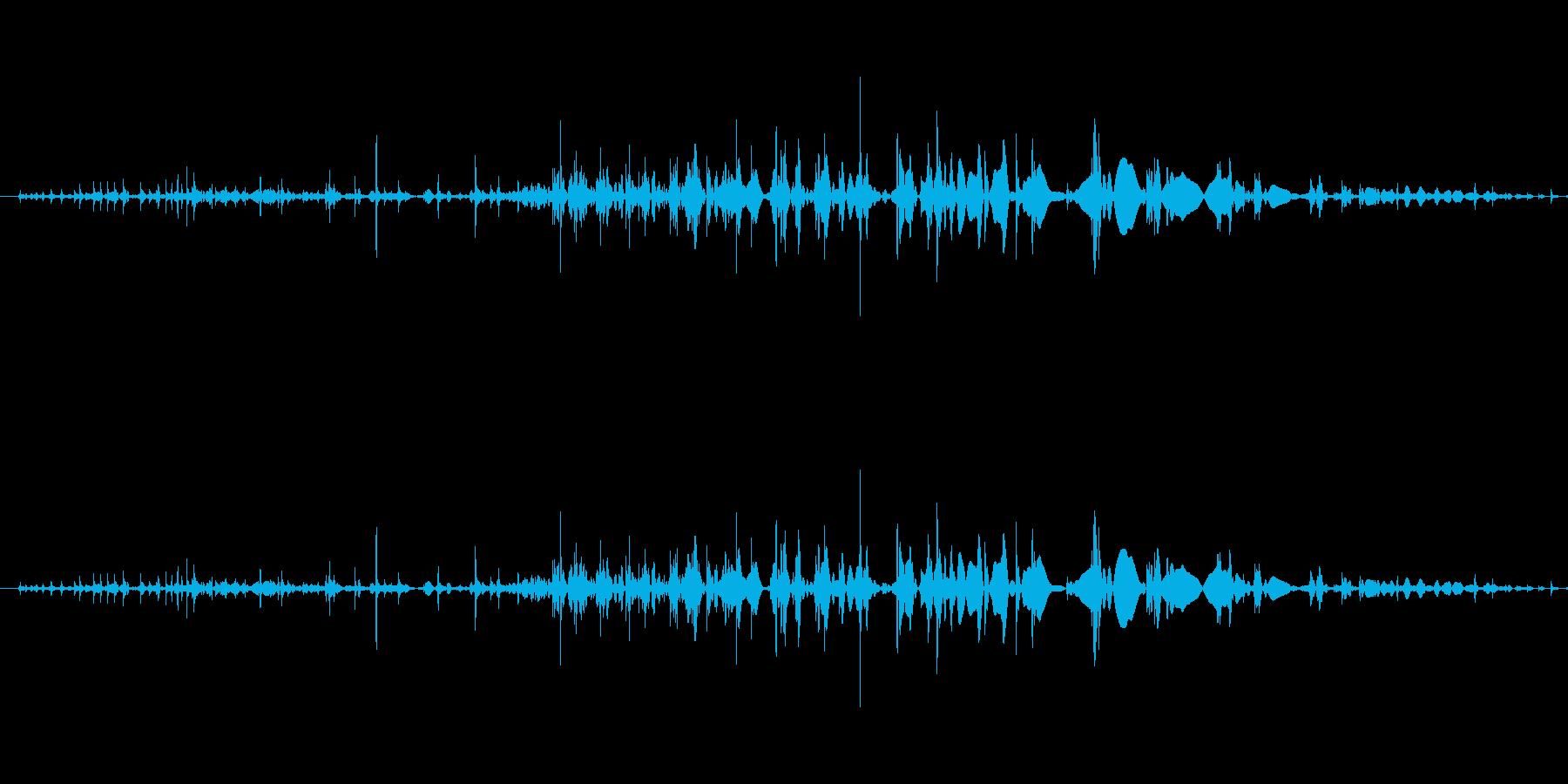 「ギリリッ」締め上げる2の再生済みの波形