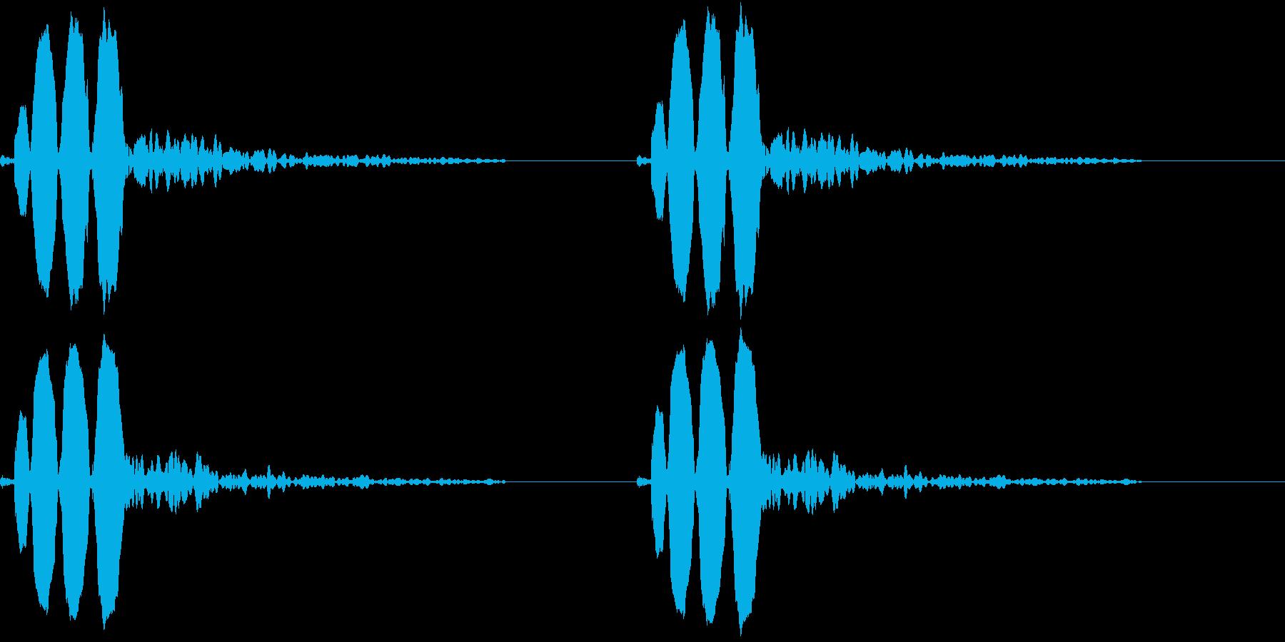 Animal 鳥のさえずり ちゅんちゅんの再生済みの波形