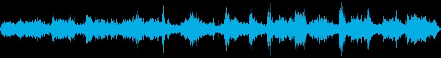 野鳥のコーラスの再生済みの波形