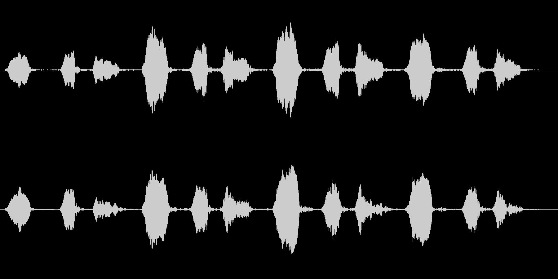 ヒガラのさえずり(ツピン ツピン)の未再生の波形