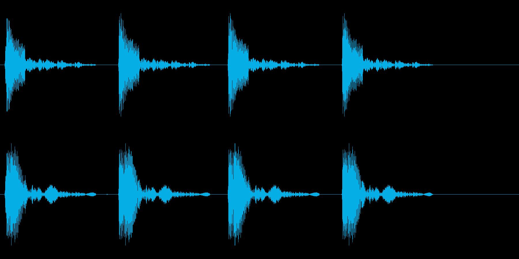 コッコッコッコッという鳴き声の再生済みの波形