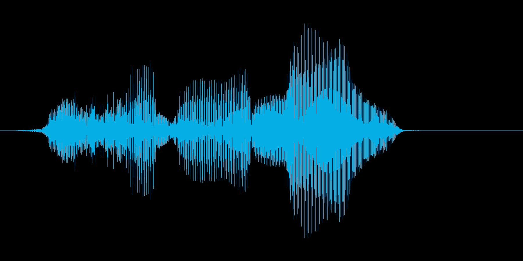 やるね!【ロリキャラの褒めボイス】の再生済みの波形