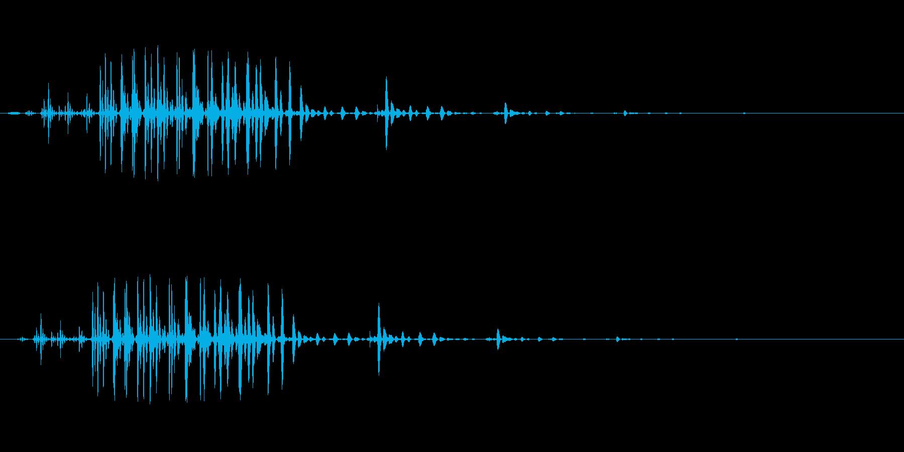 ギュルル(ステータス異常)の再生済みの波形