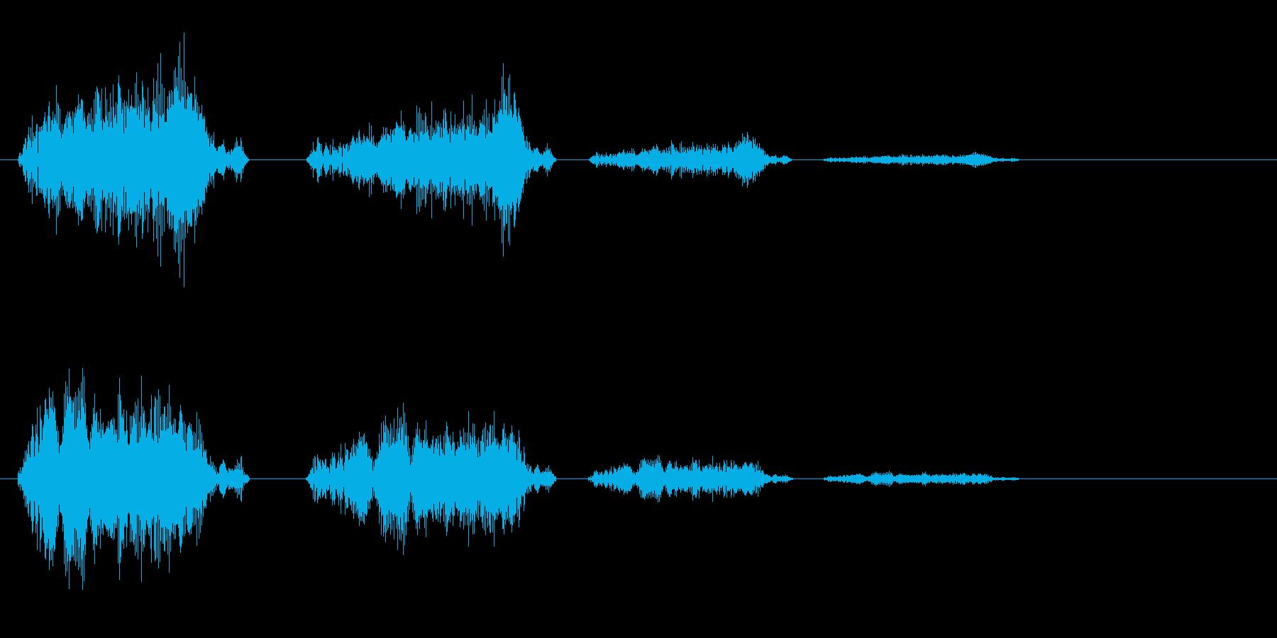 チュ〜チェ↑チェチェの音の再生済みの波形