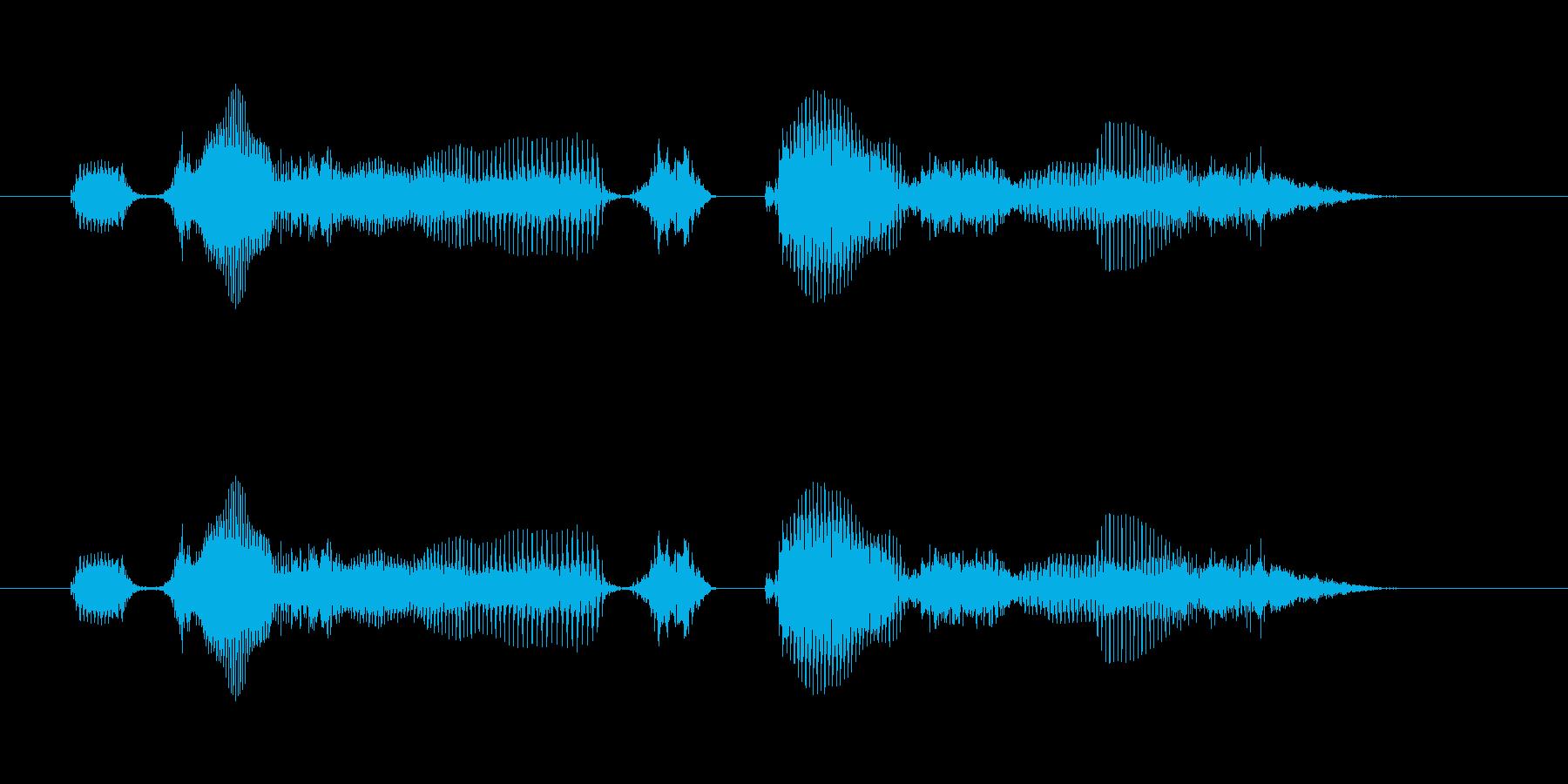 【時報・時間】1時をお伝えしますの再生済みの波形