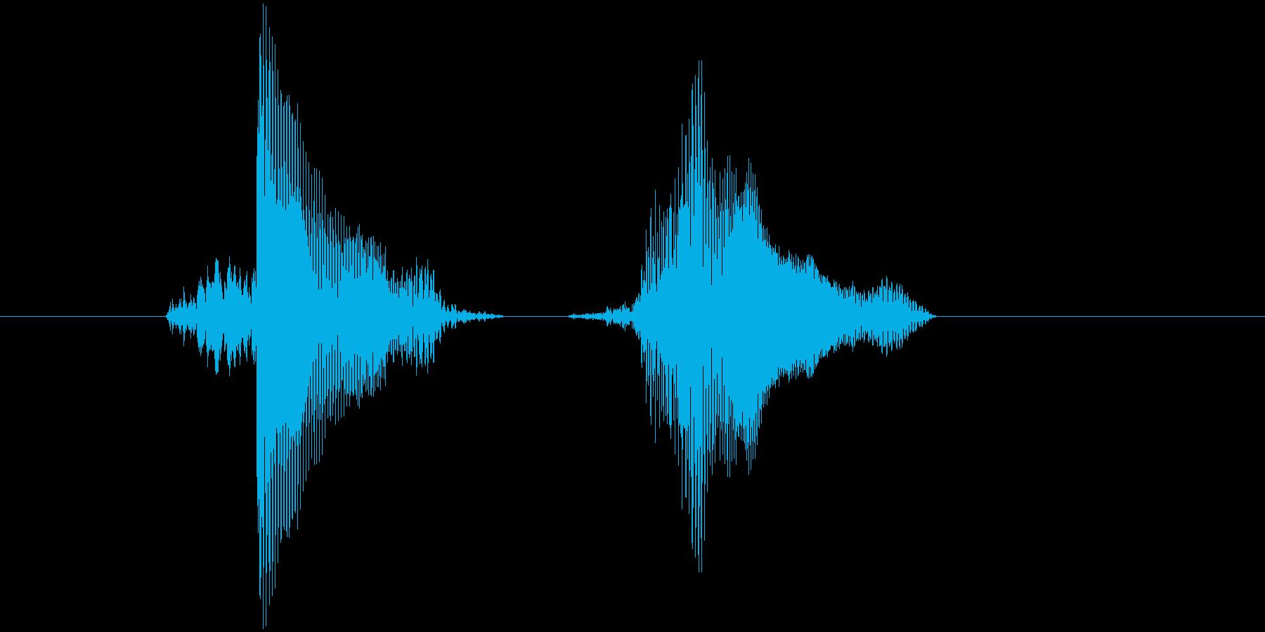 「ホイ・ホイ!」の再生済みの波形