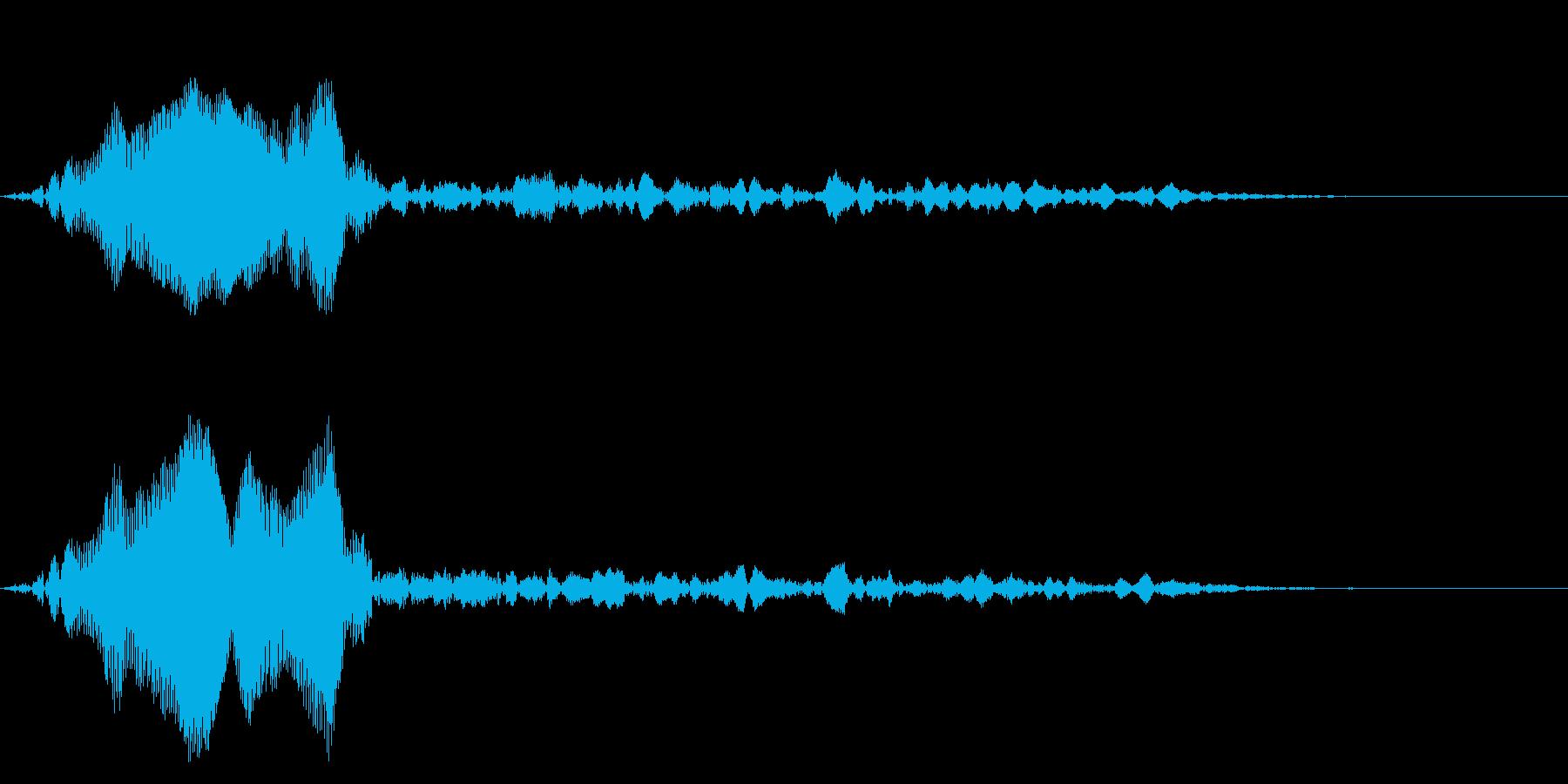 Animal 小さな生き物の鳴き声の再生済みの波形