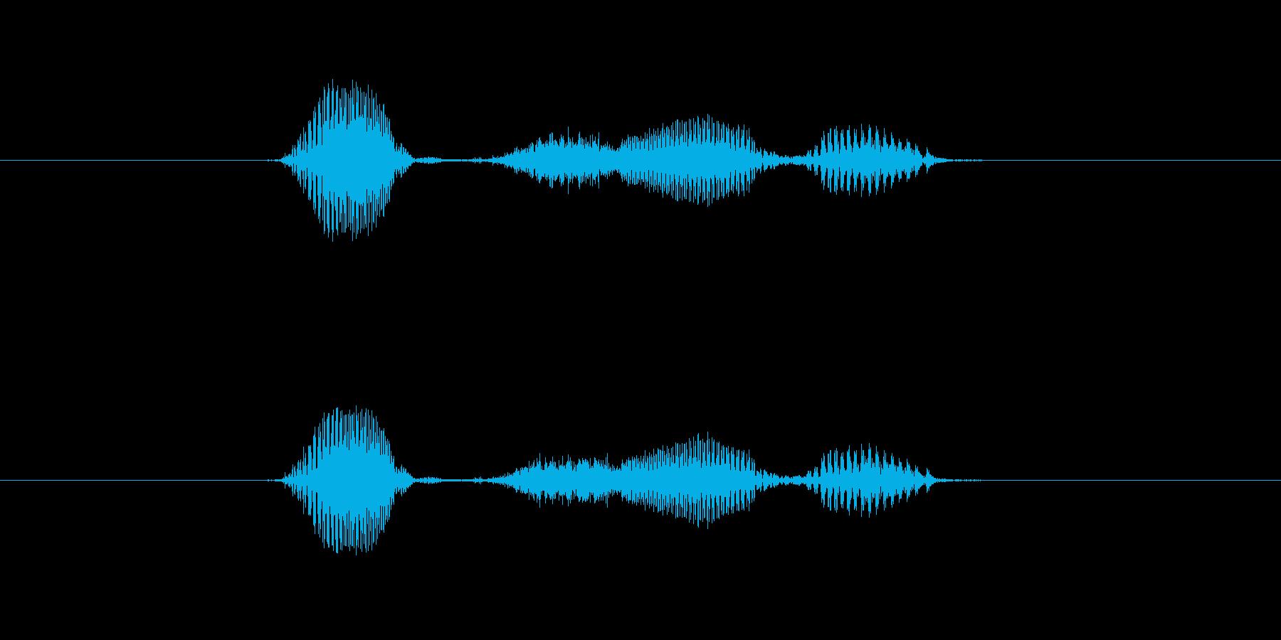 物理の再生済みの波形
