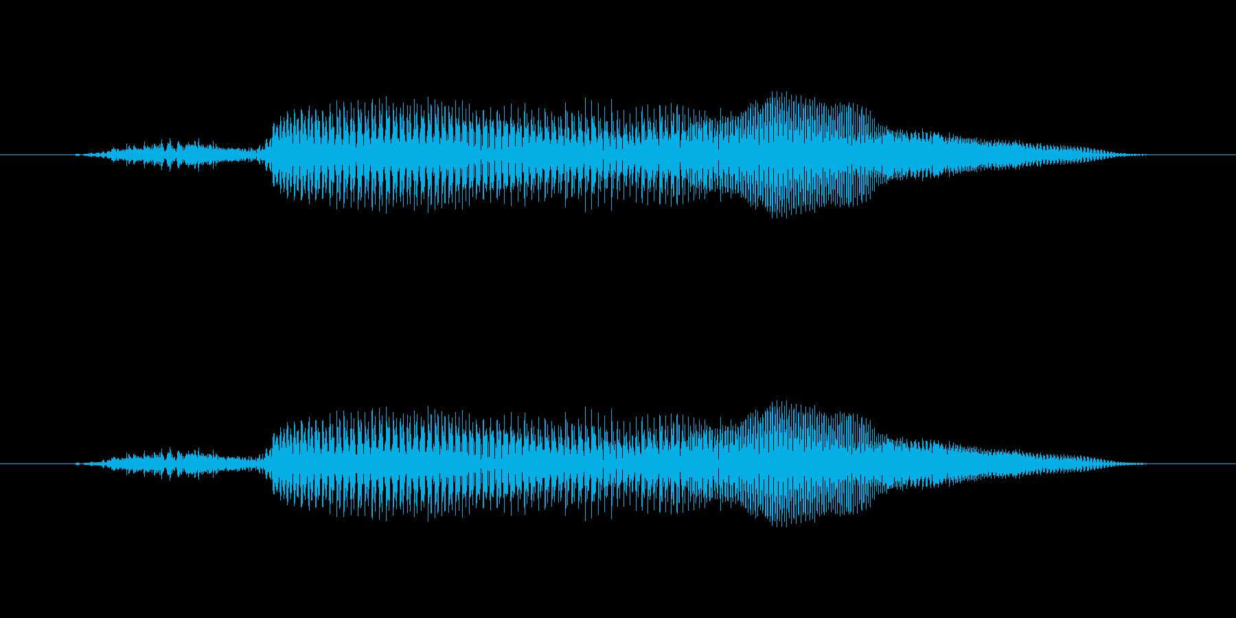 きゅー?【鳴き声】知性のあるペットキャラの再生済みの波形