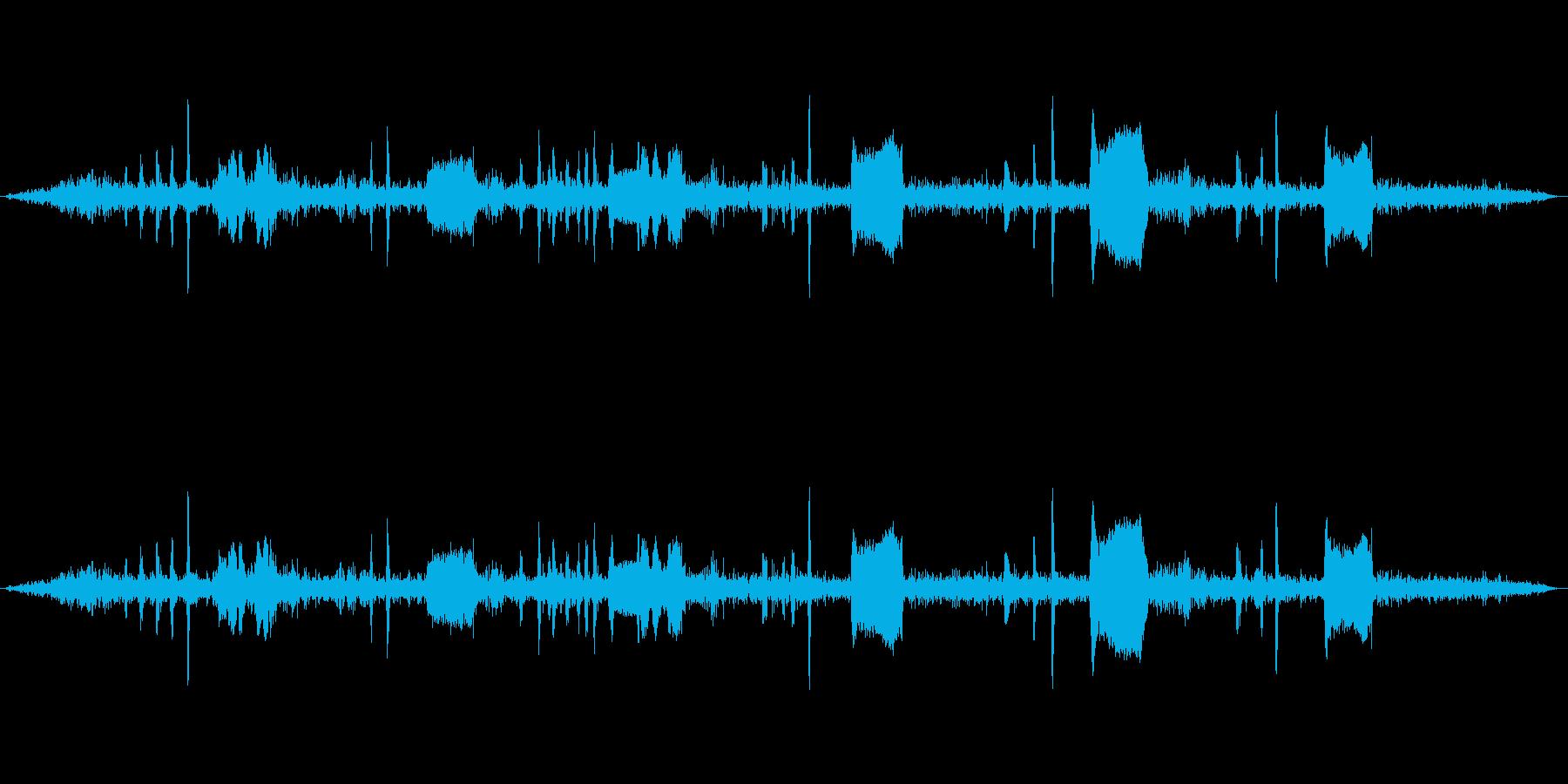 鳩を至近距離で録音しましたの再生済みの波形