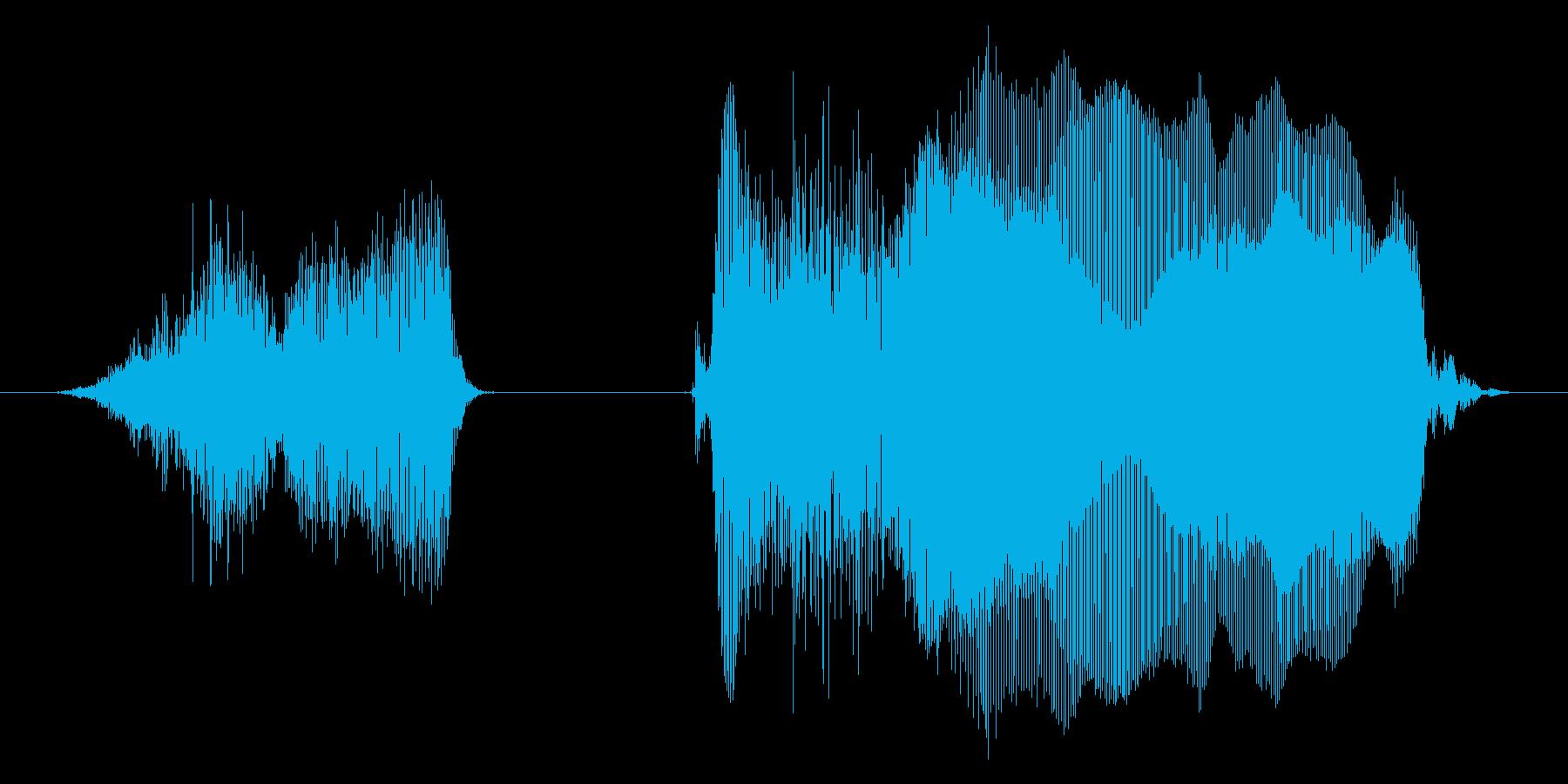 すっごーい!2【ロリキャラの褒めボイス】の再生済みの波形