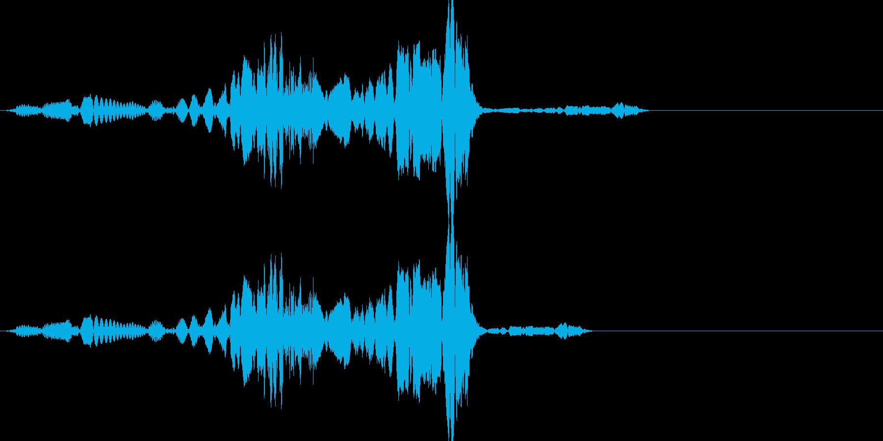 ビコン(click_042_ボタン)の再生済みの波形