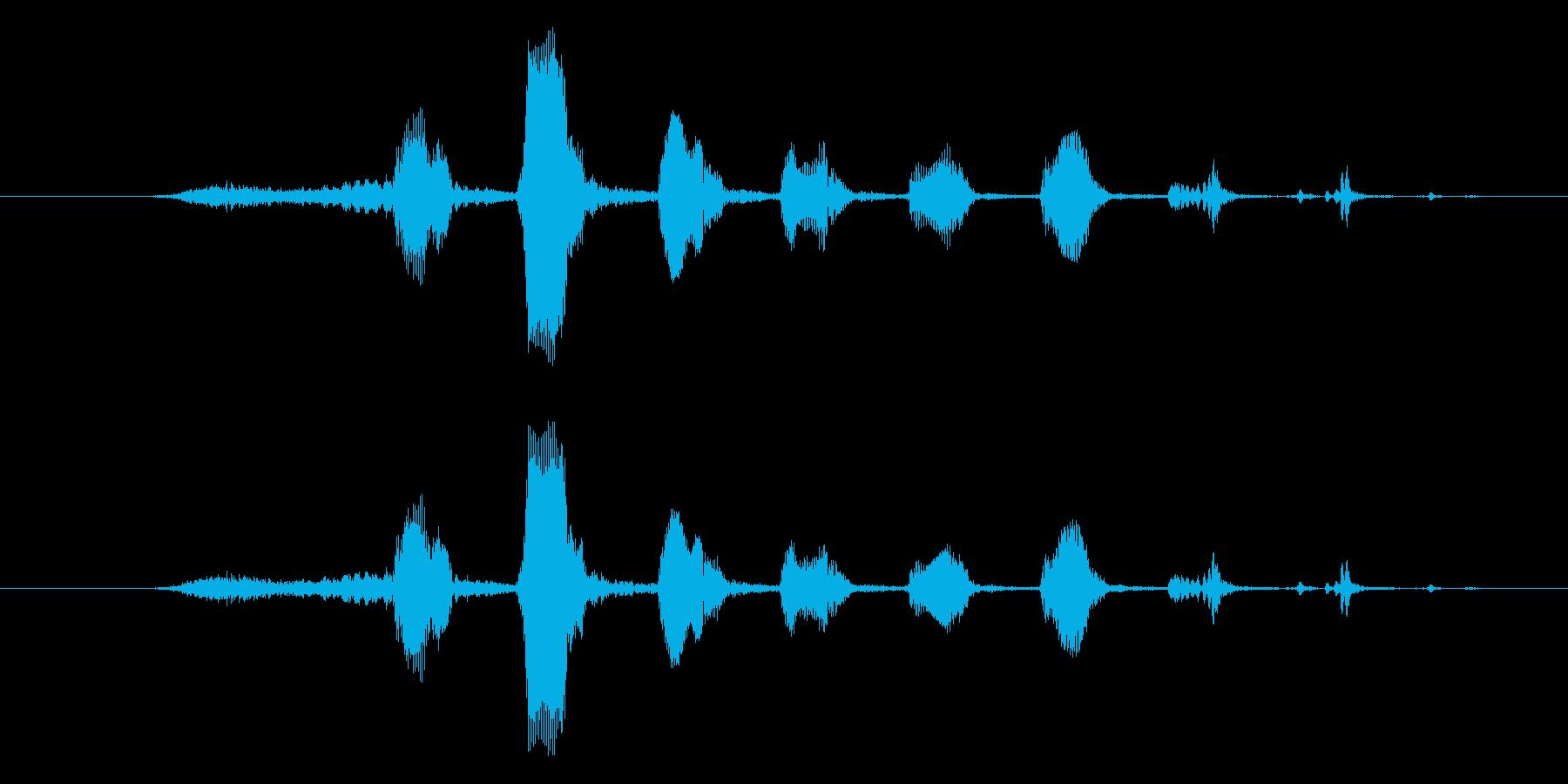 悪い笑い声の再生済みの波形