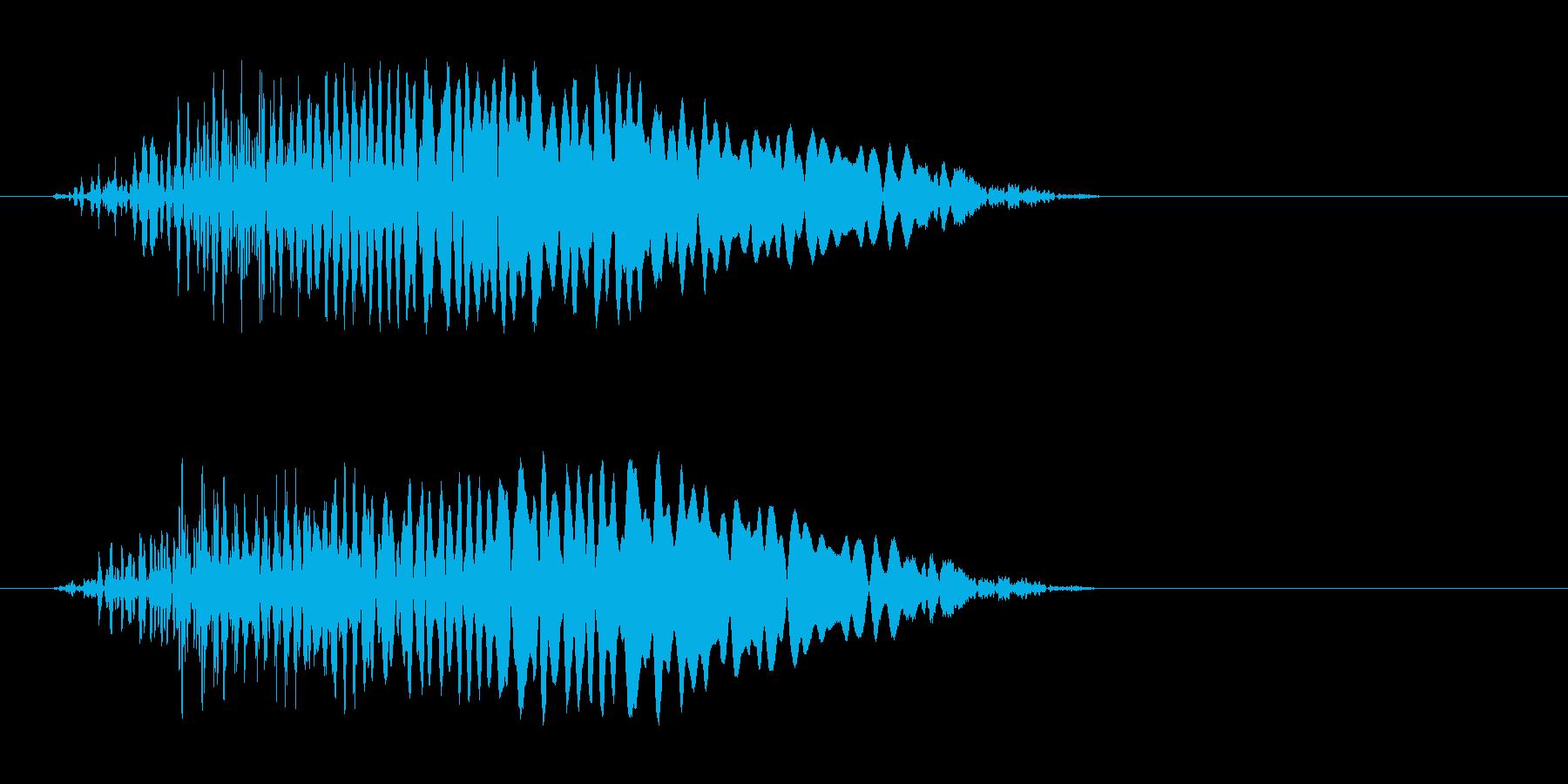 ピュー(何かが飛び出した音)の再生済みの波形