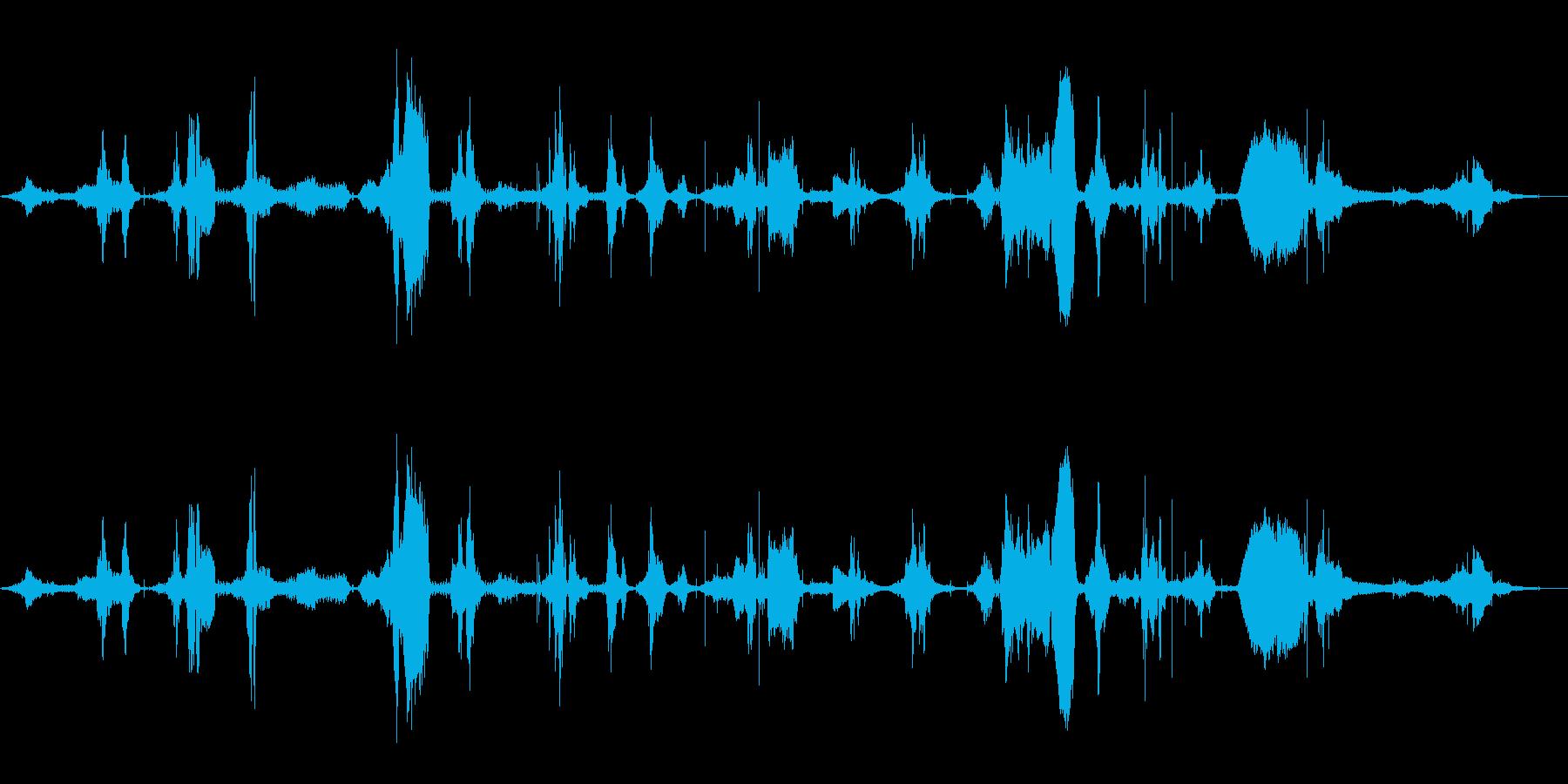 ラジオチューニング音 の再生済みの波形