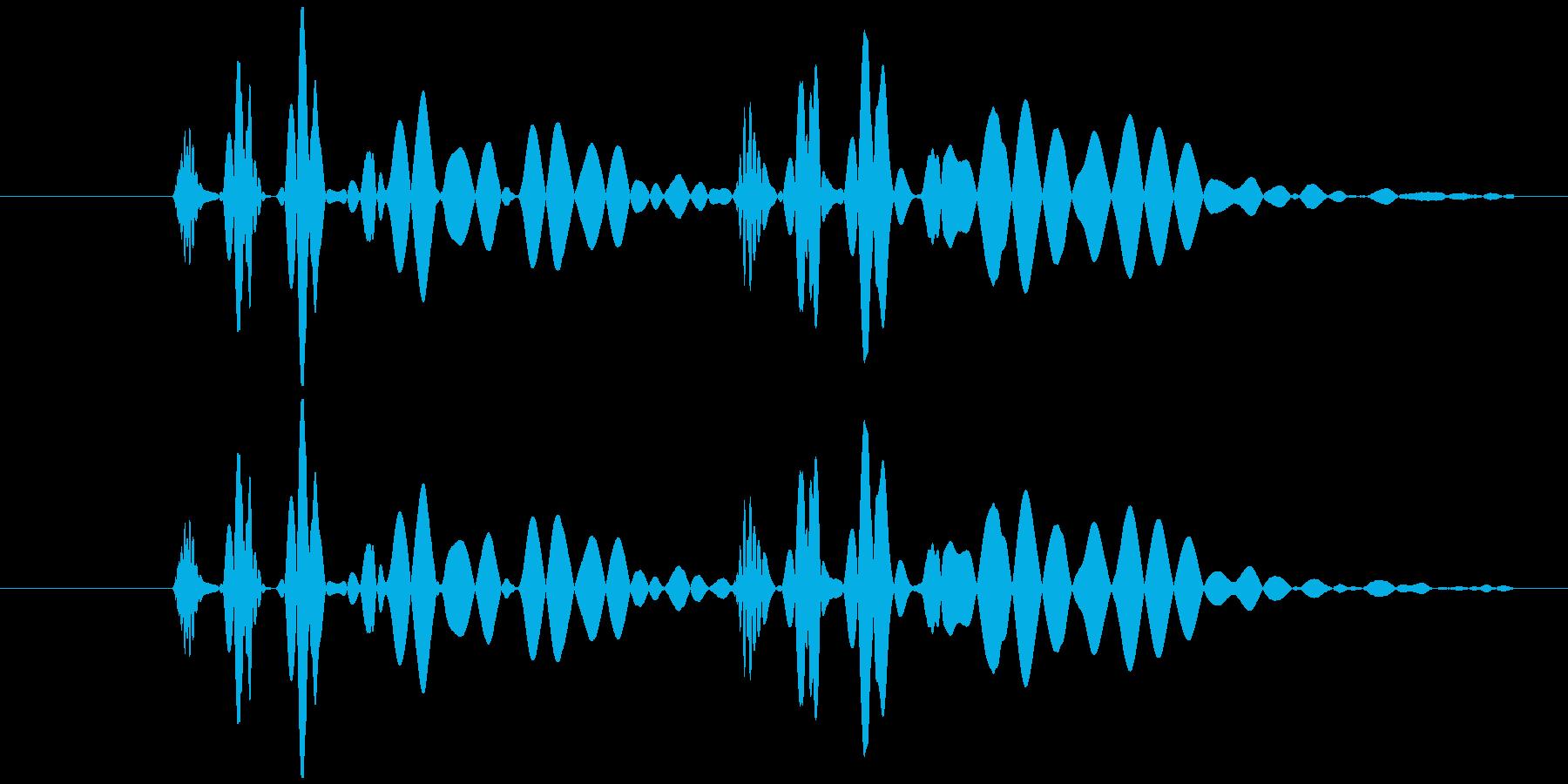 心臓 鼓動 単音の再生済みの波形