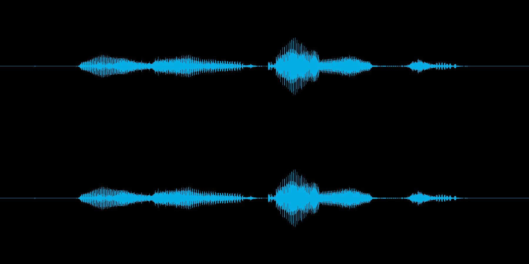 【日】25日の再生済みの波形