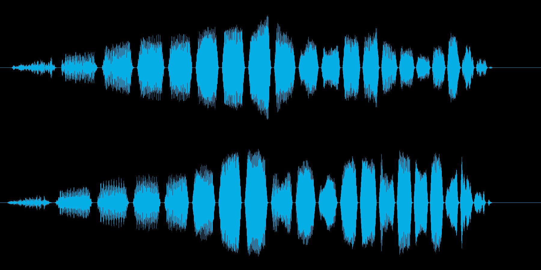 タラタラタラ〜ン(マシンが動き始める音)の再生済みの波形