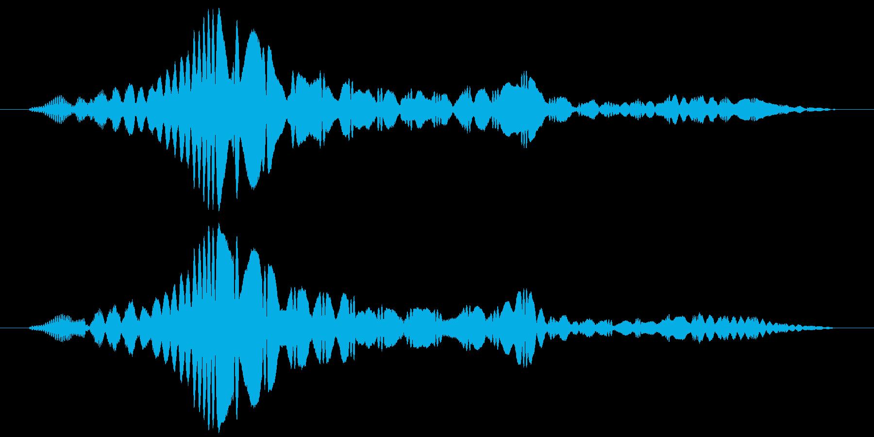 ふぃーんと言う音です。の再生済みの波形