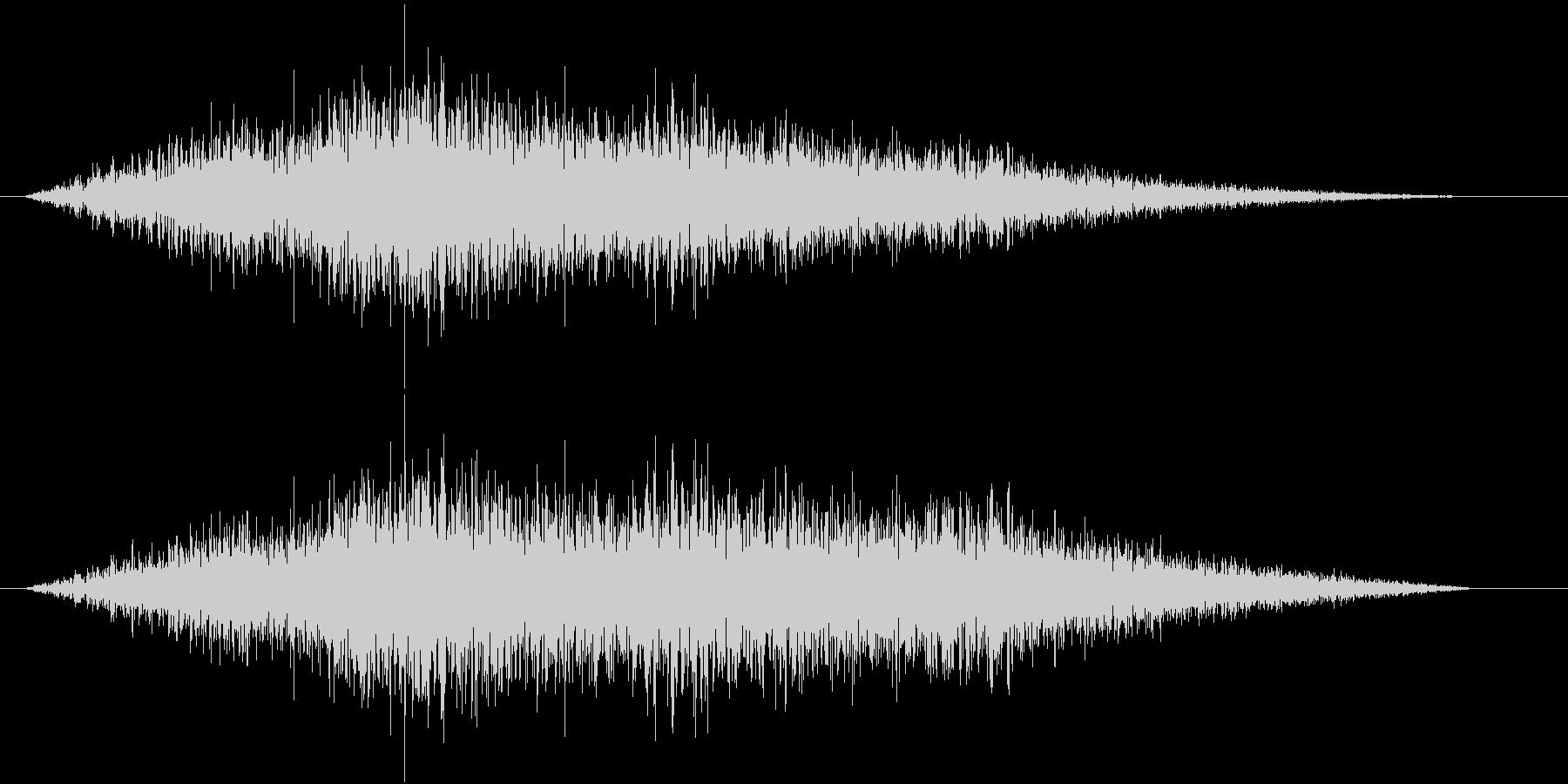 フィーン(左から右)の未再生の波形