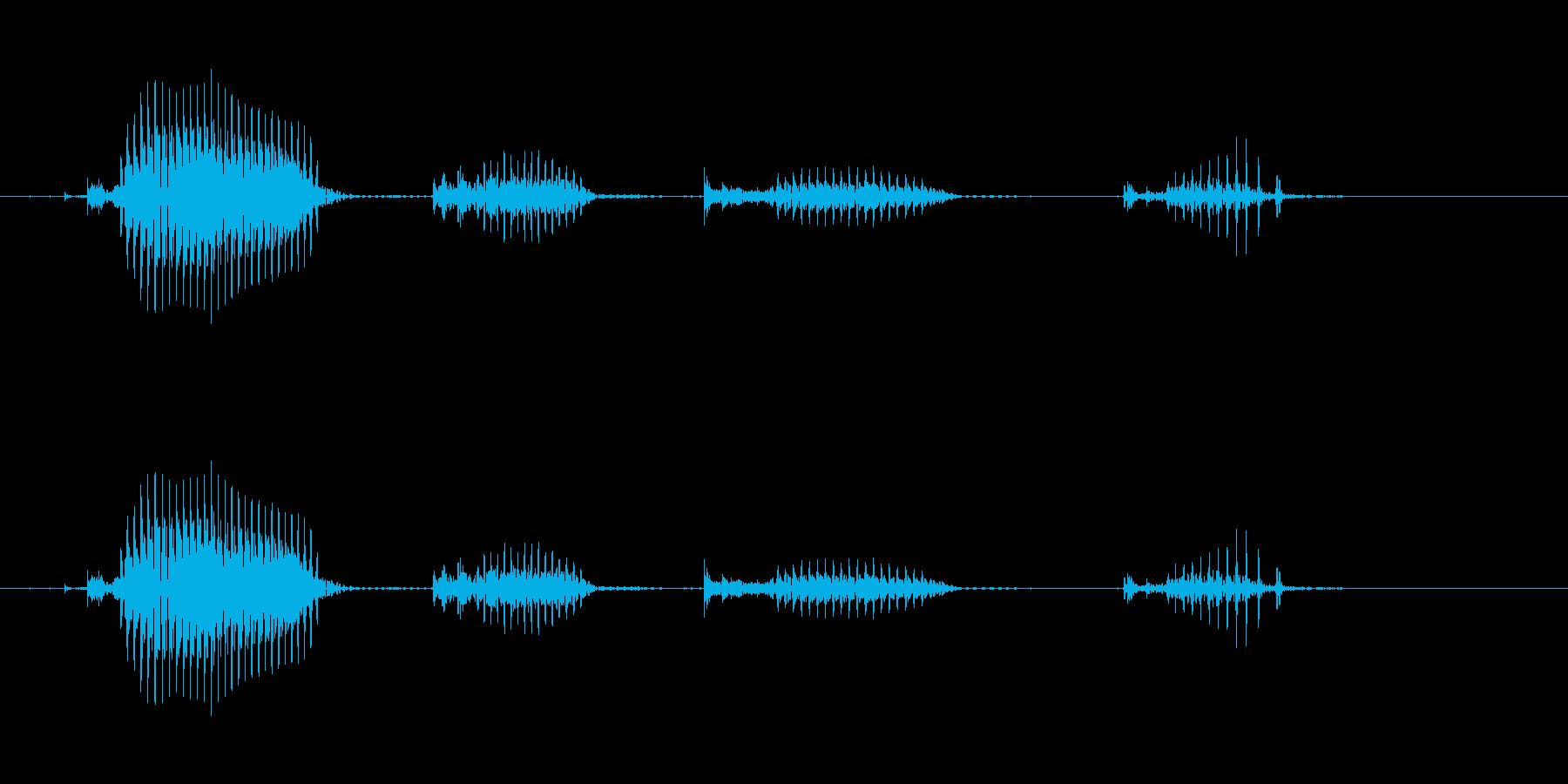 【日数・経過】10日経過の再生済みの波形