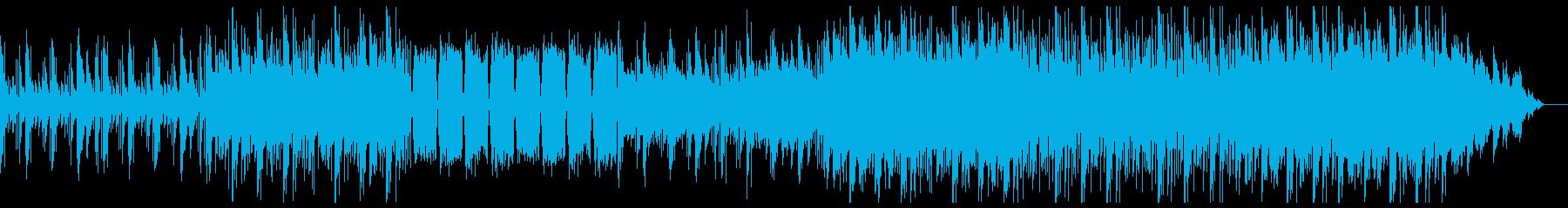 エスニックなエレクトロニカの再生済みの波形