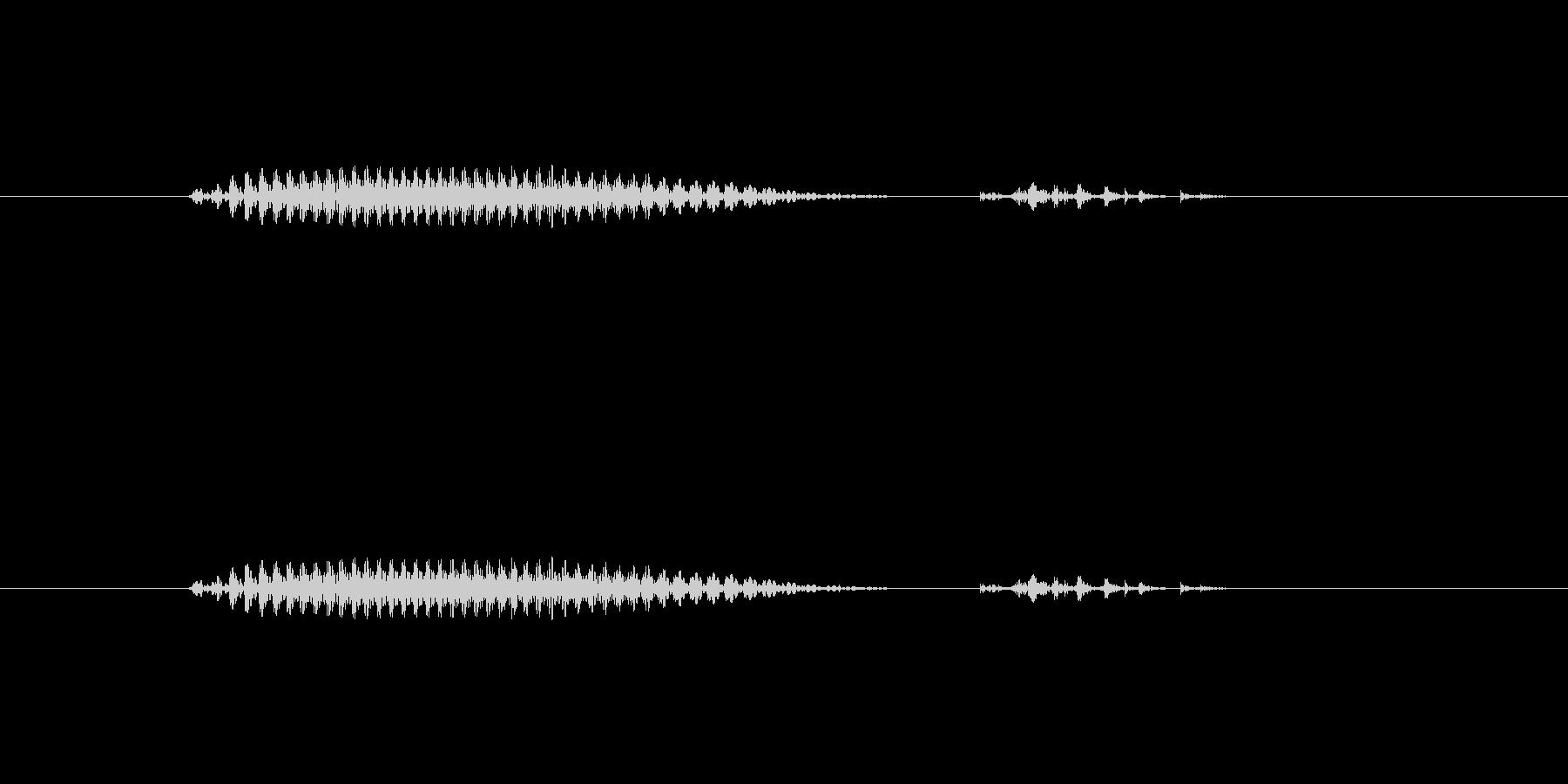 大分(県名)の未再生の波形