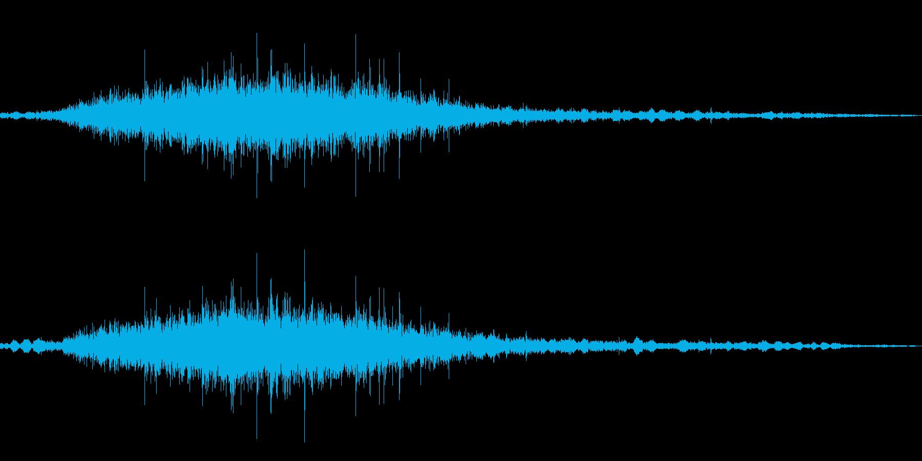 ザザザ…茂みから何か現る音の再生済みの波形