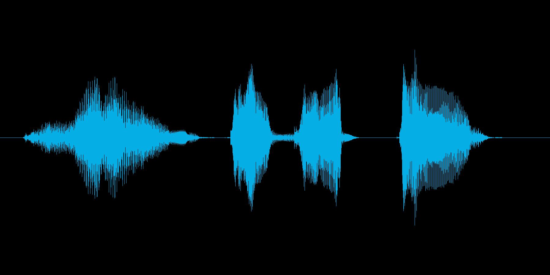 ポイントゲット!の再生済みの波形