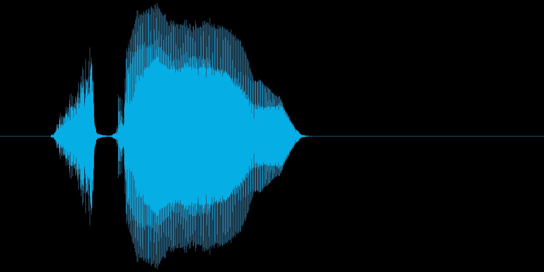 「スコーン」の再生済みの波形