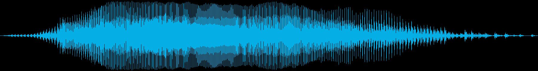 アメリカ人女声「Waao!(ワーオ!)」の再生済みの波形