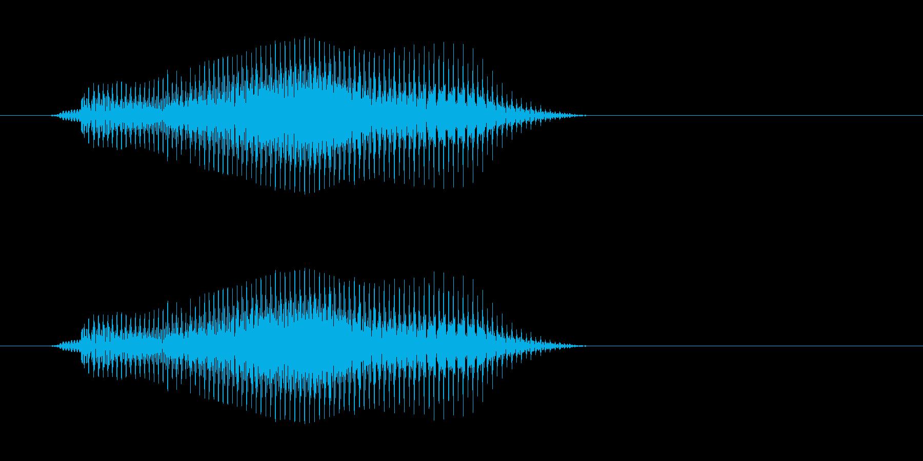 ブイの再生済みの波形