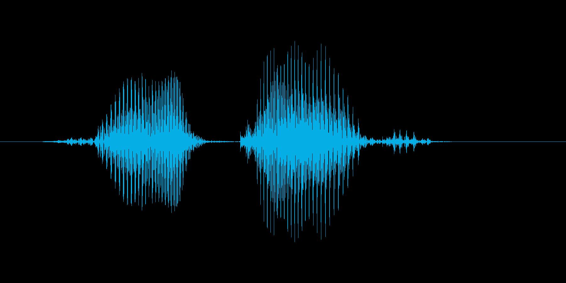フォーカードの再生済みの波形