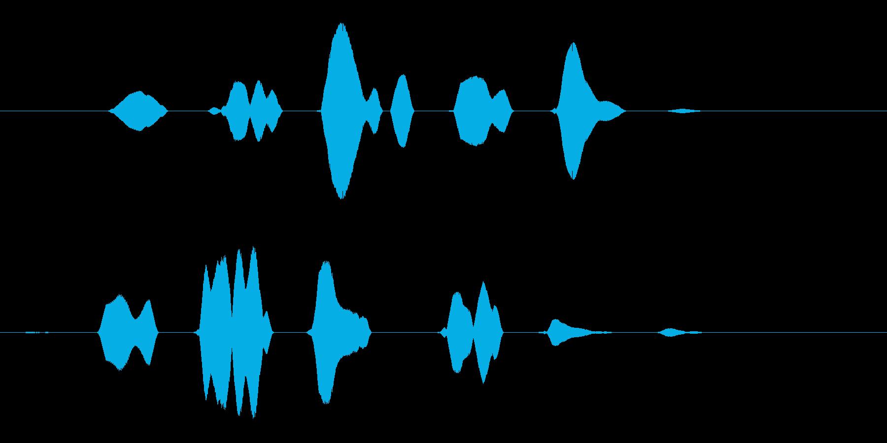リリリン (涼しげな虫の羽音)の再生済みの波形