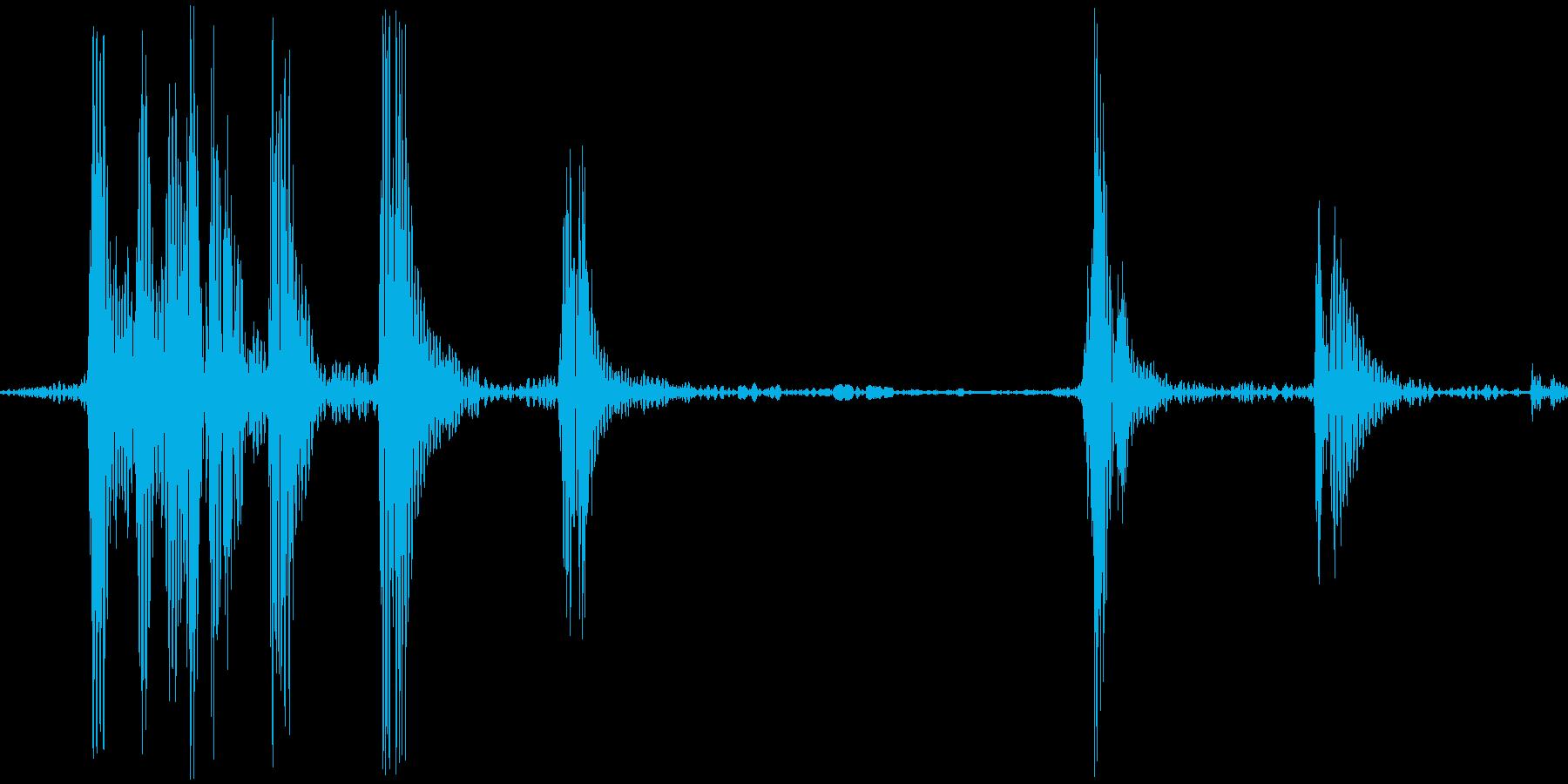 ゲコッ。カエルの鳴き声の再生済みの波形