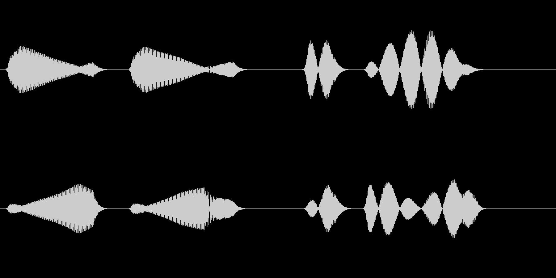 ホーホヘッホッホー(山鳩の鳴き声)の未再生の波形