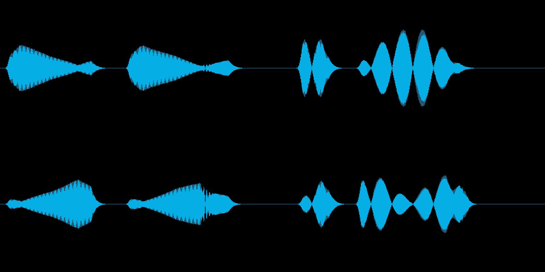 ホーホヘッホッホー(山鳩の鳴き声)の再生済みの波形